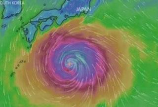 พายุฮากิบิส